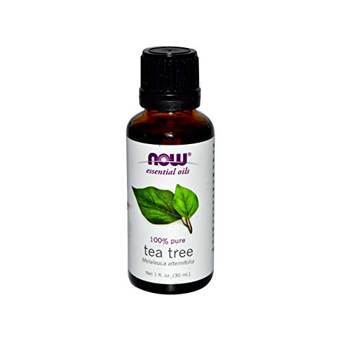 Now Foods, Oil Tea Tree, 1 Fl Oz