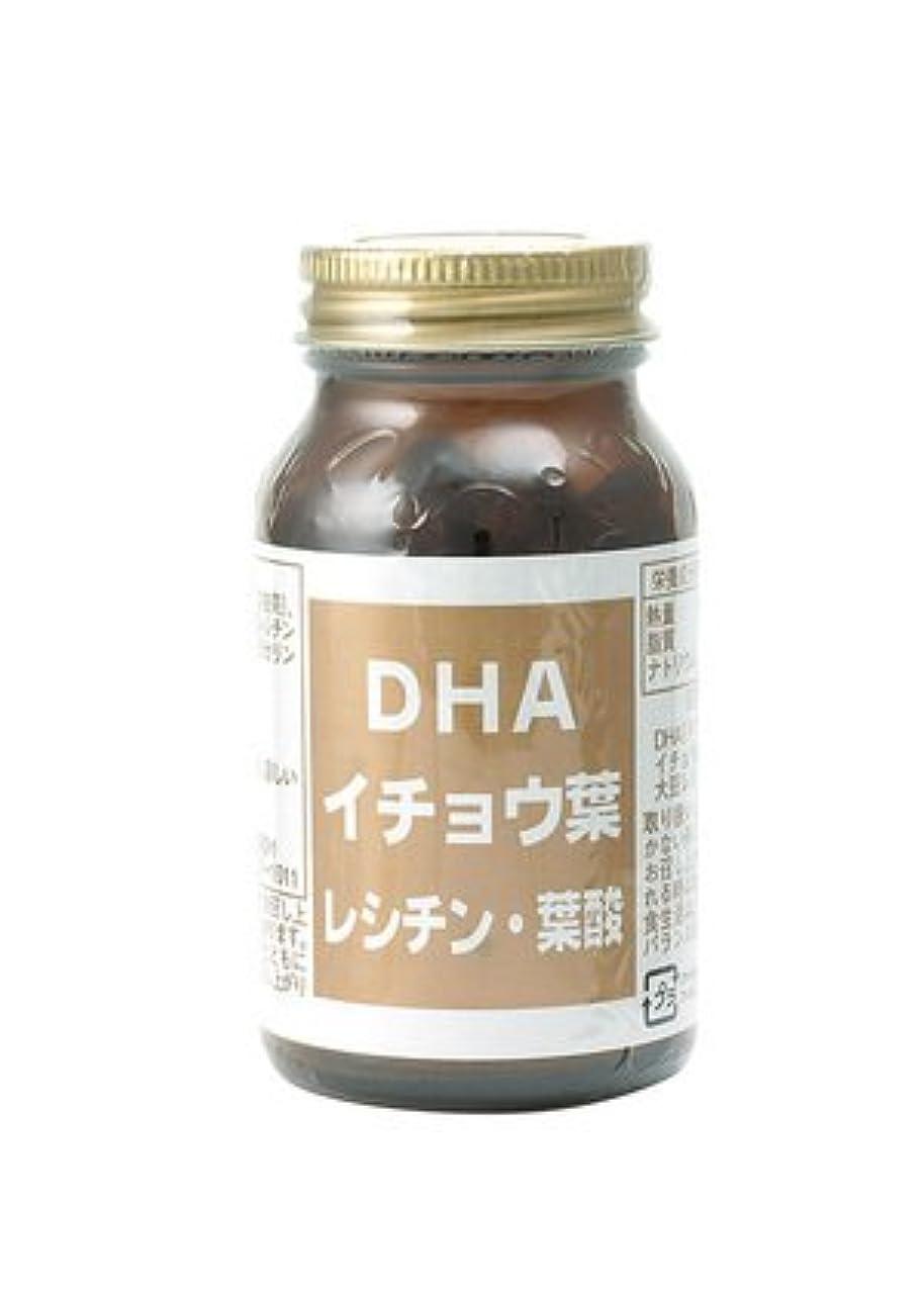 端アクセスぐったりDHA イチョウ葉 大豆レシチン 葉酸 配合 DHA 56.4g