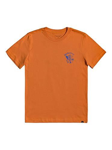 Quiksilver Jungen Walking Backwards Tee Hemd, Apricot Buff, Groß