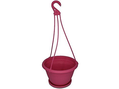 meindekoartikel Blumenampel Color aus Kunststoff Verschiedene Größen und Farben (Ø 25 cm, Pink)
