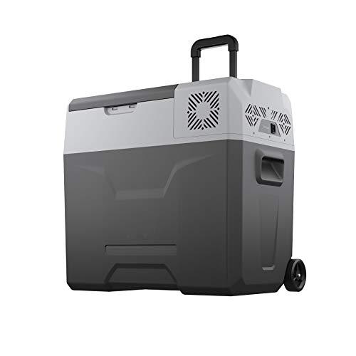 BornTech Electric Cooler Portable Refrigerator...