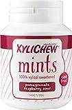 Xylichew 100% de xilitol mentas para el aliento tarros - no ogm, gluten, aspartamo, y sin azúcar chicle - mal aliento y boca seca 140 conde frambuesa granada