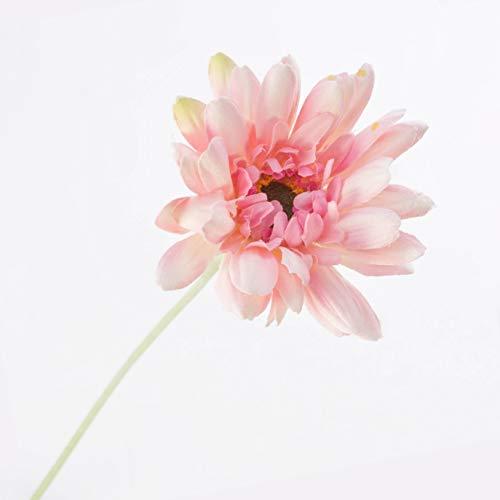 artplants.de Künstliche Gerbera, Creme - rosa, beflockter Stiel, 55cm, Ø 11cm - Textilblume