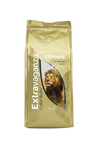 Extravaganza - Café de Etiopía en grano, 250 g (lote de 12)