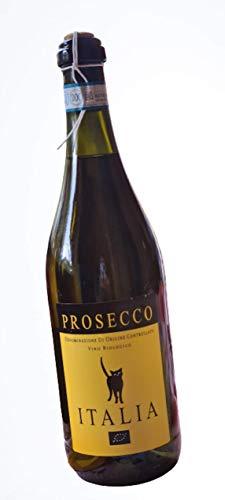 Prosecco Frizzante Italia Pizzolato Veneto Bio | 0,75l Flasche | Prosecco Geschenk | Prosecco Bio Frizzante | Harmonisch, frisch | Prosecco aus Italien | aus kontrolliert biologischen Anbau