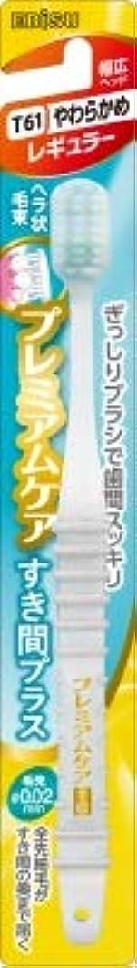 上がる小説家眉をひそめる【まとめ買い】プレミアムケアすき間プラス?レギュラーS ×6個