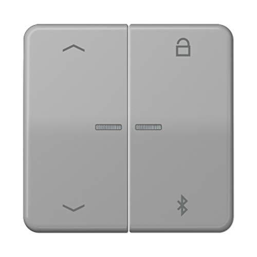 Universal-Programmierungstaste, mit Bluetooth und Pfeilen, Grau