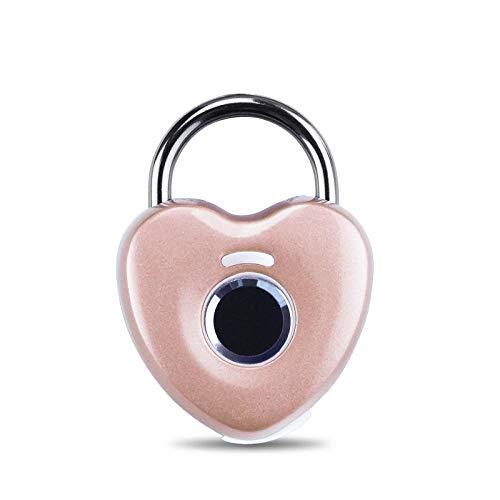 Vingerafdruk-hangslot, diefstalbeveiliging voor buitenshuis, intelligent hangslot voor bagage, sportschool, slaapkamerkast, klein slot. Violeta