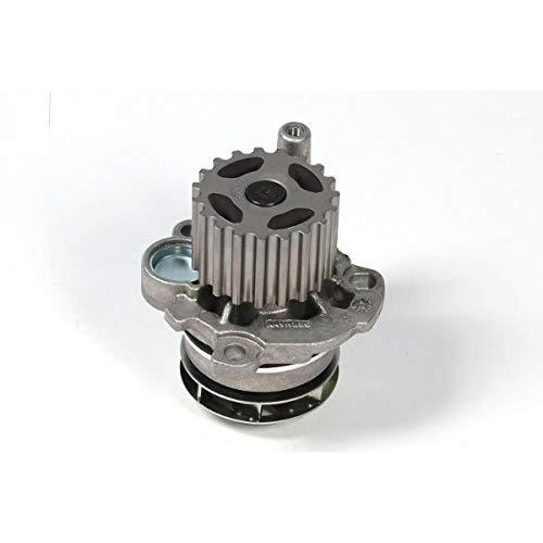 Hepu P569 Wasserpumpe