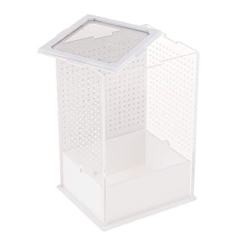 KESOTO Acryl Terrarium Fütterungsbox Transportsbox für Reptilien Schildkröte Eidechse Frosch Grille Gottesanbeterin - Typ 1