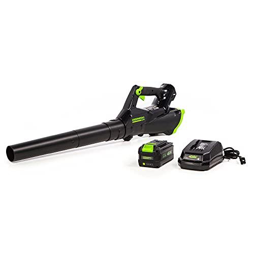 Greenworks 40V Cordless Axial Leaf Blower, 390 CFM / 110 MPH, LB-390