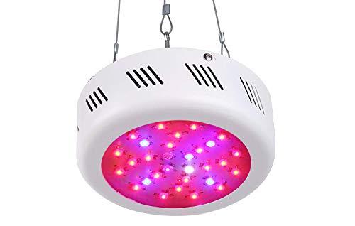 UFO LED Grow Light 300W,Roleadro 9 Band Full...