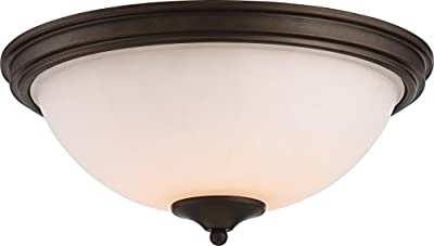 Nuvo Lighting Light Chandelier Nuvo LED