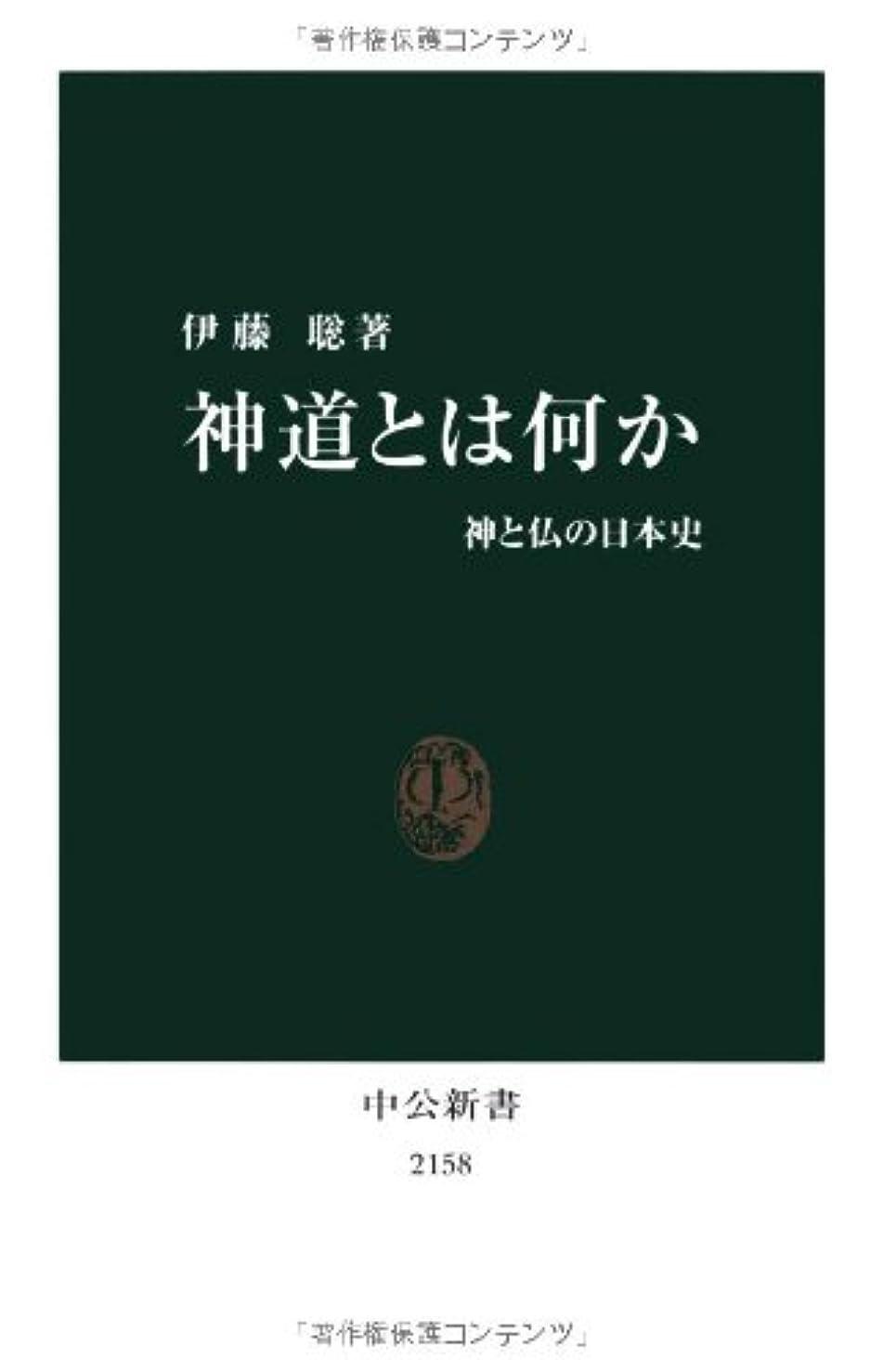 包囲不適切な煙突神道とは何か - 神と仏の日本史 (中公新書)