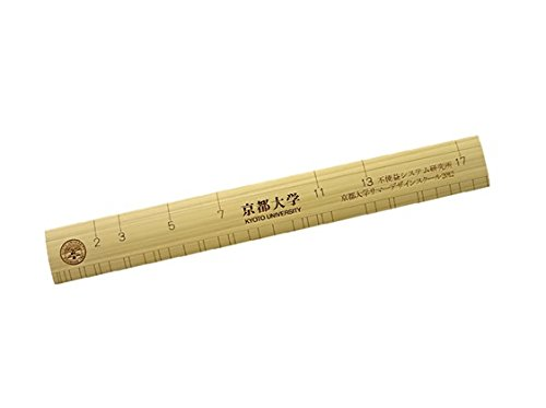 京都大学 限定 素数ものさし