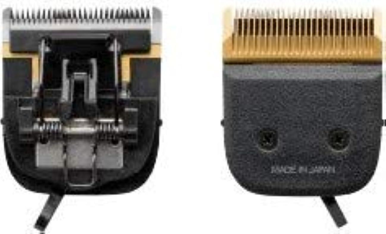 些細調整可能壮大なスライヴ 3100用替刃 スライド刃