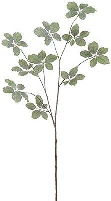 "Arcadia Silk Plantation 50"" Iced Beech Leaf Spray Green Gray (Pack of 12)"