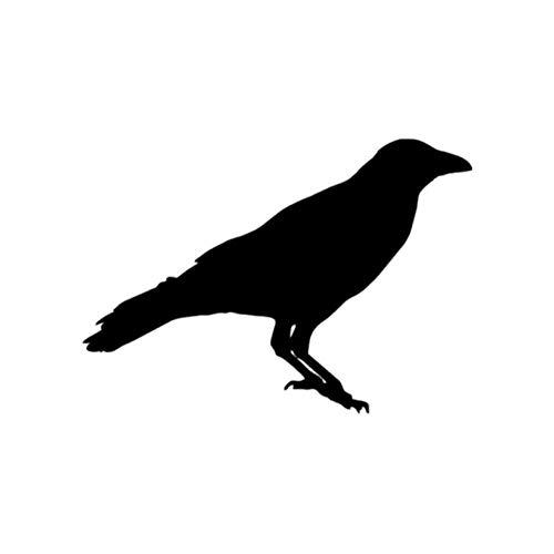 Empty 17 cm x 12 cm dieren-raaf vogel plezier vinyl autosticker decoratie sticker zilver zwart car-styling blue