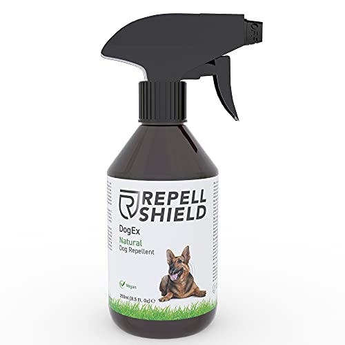 RepellShield Spray Repelente para Perros - Ahuyentador de Perros Natural - Spray Antimordeduras Perros para Exteriores e Interiores, Eficacia Duradera - Pipi Stop con Fragancia de Hierbabuena, 250ml 🔥