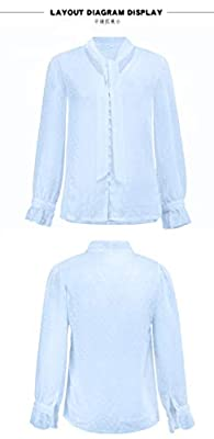 Rainnbowing 2019 FashionWomen Transparent Chiffon V-Neck Slim Sexy Blouse (Blue, L) by Rainnbowing
