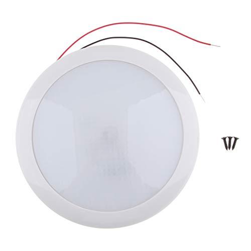 LOVIVER Barco RV Luz de disco LED de interior Luz de domo de techo ultrafina regulable