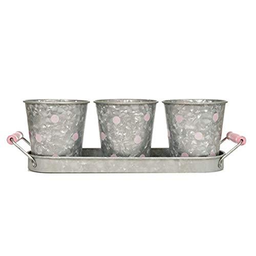Mini Seau de Jardin 3 pièces, Mini décorations de Jardin, Ensemble de Pots de Fleurs rétro en Fer avec Plateau, adapté à la décoration de la Maison et du Bureau