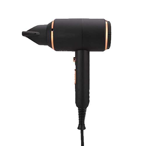 Cabello eléctrico de iones negativos de 3000 W, secador de pelo ajustable de gran potencia, secador de pelo eléctrico para viajes (enchufe de la UE 220 V)