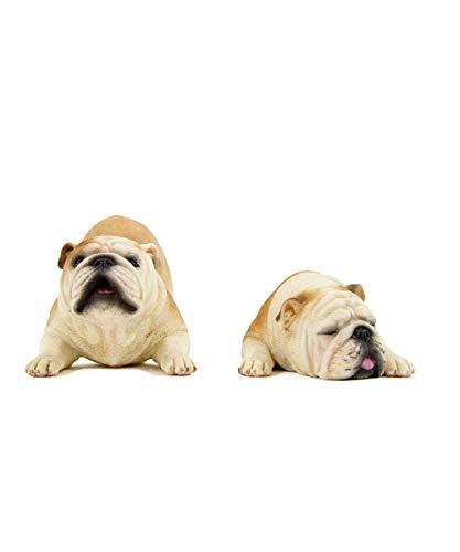 Petorama Dekofigur, 100% handgefertigt, handbemalt, hochwertig, lebensrealistisch, englische Bulldogge One Size 3