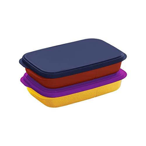 Tupperware Plastic My Lunch Liquid-Tight Lunch Box 590ml 2pc (Multicolour)
