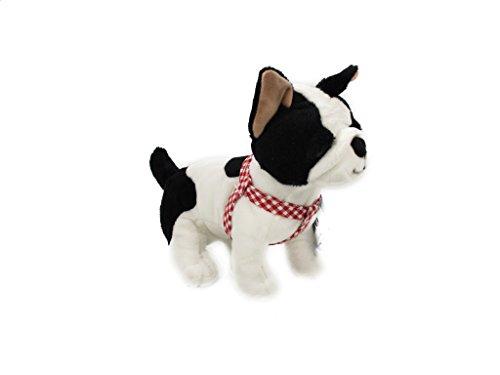 Bulldog francés pequeño (17cm). Con collar de colores