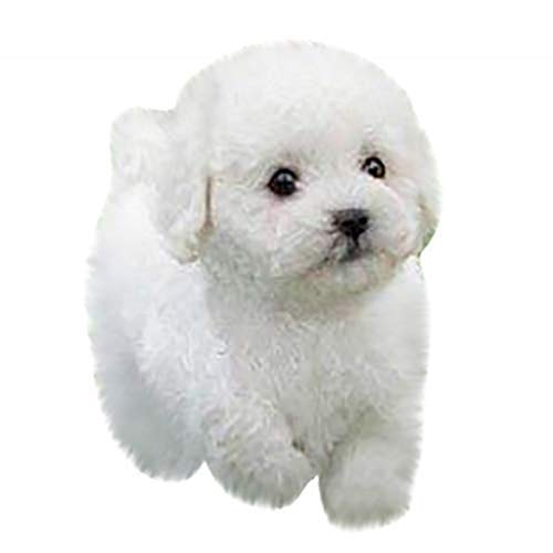 UOWEG Realistische Teddy Dog Lucky,Simulation Realistische Teddy Dog Lucky Cute Pudel Plüschpuppe Welpe Suffed Doll,Plüsch Stofftier Weihnachten Hündchen Kuscheltier Spielzeug Für Kinder