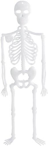 infactory Dekoration für Party: Nachleuchtendes Deko-Skelett Spooky Bones, 32 cm, 4er-Set (Halloween Deko für draussen)
