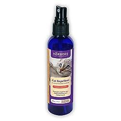 Image of Harbors Cat Repellent and...: Bestviewsreviews