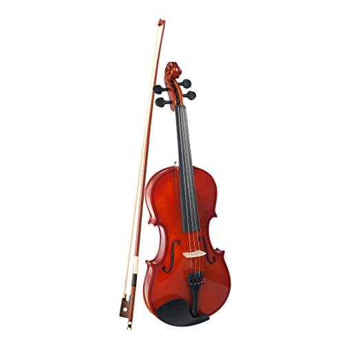 Shiwaki Professional 4/4 Akustische Violine Geige Massivholz für Anfänger mit Koffer, Bogen und Kolophonium