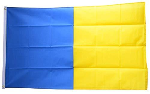 Flaggenfritze® Flagge/Fahne Blau-Gelb - 90 x 150 cm