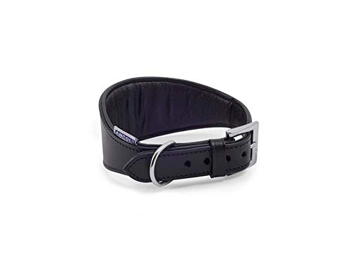 Ancol Windhund Halsband gepolstert Leder, 47cm, schwarz