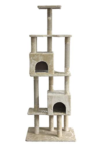 Amazon Com On2 Pets Cat Tree With Leaves Made In Usa Large Square Cat Condo Cat Activity Tree In Evergreen Pet Supplies