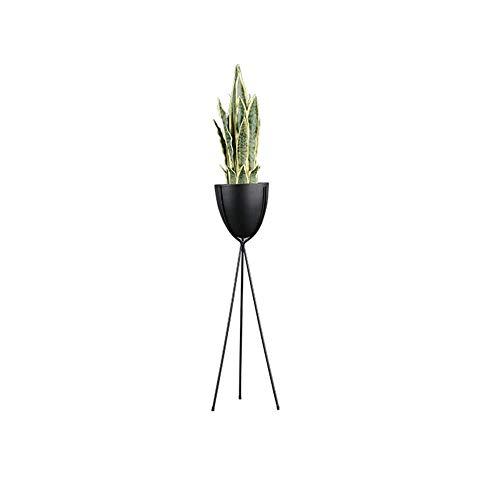 WAJI Eisen blumenständer Wohnzimmer licht kreative Pflanze blumentopf Indoor Bonsai blumenkasten Topf Rack-5