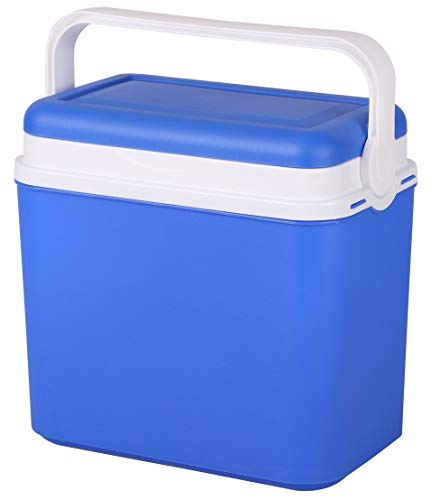 Nevera portátil de plástico con aislamiento de 10 litros con tapa de bloqueo