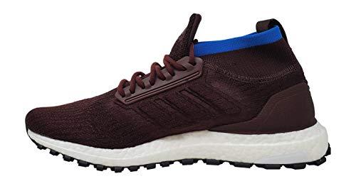 adidas Men's Ultraboost All Terrain Running Shoe red Size: 8.5 UK