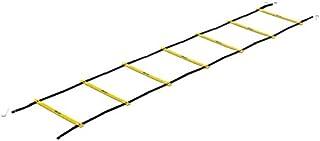 SKLZ(スキルズ) トレーニング用 ラダー クイックラダープロ 018618 【日本正規品】