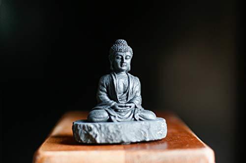 Shungite buddha statue in rustic boho style   EMF protection, crystal healing, amulet, root chakra