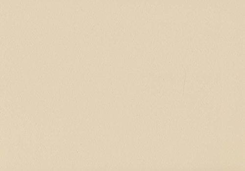 Volvox | Espressivo Lehmfarbe | Bunttöne 1 | Biofarbe | 2,5 Liter | 20 m² (café au lait | 003)
