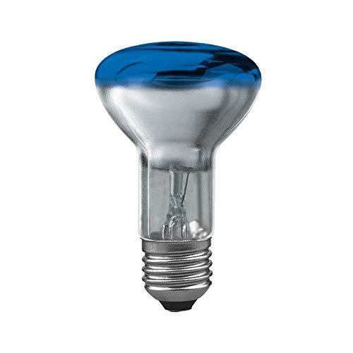 Paulmann 23044 Reflektor Glühbirne R63 40W E27 102mm 63mm Blau Beleuchtung, Glas, 20 x 20 x 30 cm