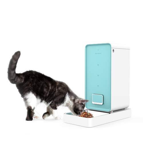 Comprar petkit comedero automático gatos y perros