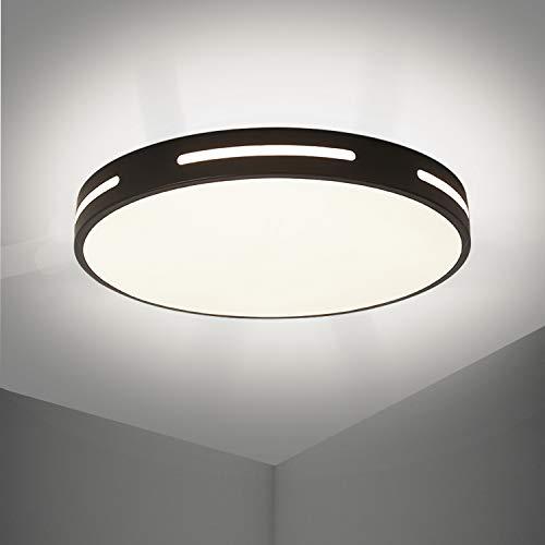 Dehobo LED Lámpara de Techo 30W Redonda, Luz de Techo Led Blanco...