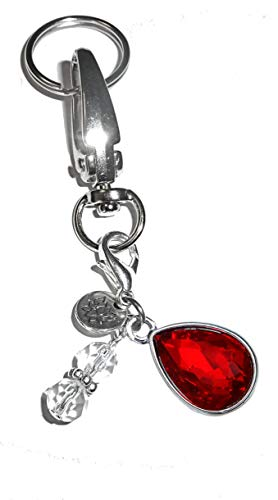 Birthstone Charm Key Chain Ring, Women's Purse or Necklace Charm, Comes in a Gift Box! (July)