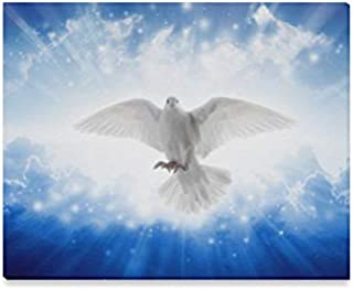 holy spirit bird picture