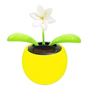 Navillus Solar Powered Dancing Flower, Lily, Rose, Sunflower, Petunia Office Desk & Car Decor