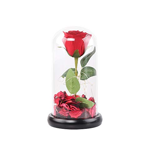 Beauty and The Beast Rose,Enchanted Red Silk Rose and Glass Dome Led Light with Fallen Petals Housewarming Gift for…